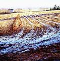 Bucks County Late Winter Fields by Bob Richey