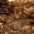 Buddha High by One Rude Dawg Orcutt