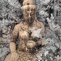 Buddha Nature by Jane Linders