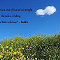 Buddha Quote On Blue Sky With Puffy White Cloud by Sarah Broadmeadow-Thomas