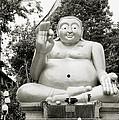 Buddha by Shaun Higson