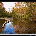 Buffalo Creek by Debbie Portwood