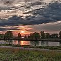 Buffalo Sunset 14390 by Guy Whiteley