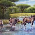 Buffalooes Watering by John