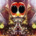 Bug Eyes by Skip Nall
