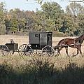 Buggy And Wagon by David Arment