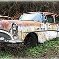 Buick Yard by Steve McKinzie