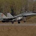 Bulgarian Air Force Mig-29 Fulcrum by Stocktrek Images