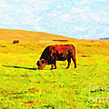 Bull Grazing In The Field by Wingsdomain Art and Photography