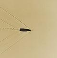 Bullet Through Air by Omikron