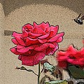 Bumble Bee And Rose by Donna  Smith