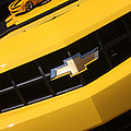 Bumble Bee Grill-7921 by Gary Gingrich Galleries