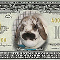 Bunny Money by Renee Trenholm