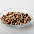 Burdock Root As A Herbal Remedy by Photo Researchers, Inc.