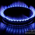 Burning Gas by Fabrizio Troiani