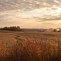 Burning Leaves On The Farm by Randall Branham
