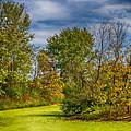 Busch Wildlife Swampy Autumn by Bill Tiepelman