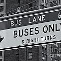 Buses Only II by Clarence Holmes