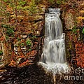 Bushkill Main Falls by Nick Zelinsky