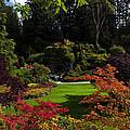 Butchart Gardens - Sunken Garden by Matt Dobson