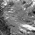 Butte Creek In Black And White by Linda Hutchins