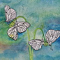 Butterflies Hanging Out by Anna Ruzsan