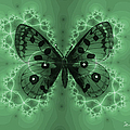 Butterfly by Ericamaxine Price