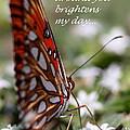 Butterfly Friendship Card by Travis Truelove