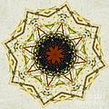 Butterfly Kaleidoscope by Tessa Murphy