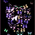 Butterfly Love by Donna Bentley