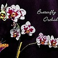Butterfly Orchid by DigiArt Diaries by Vicky B Fuller