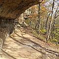 Buzzard Roost Rocky Trail by Jennifer Kelly