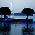 By Night Zurich Lake Switzerland by Colette V Hera  Guggenheim