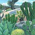 Cactus Garden by Snake Jagger