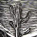 Cactus by Marita McVeigh