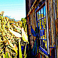 Cactus Reflection by Diane montana Jansson