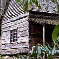 Cades Cove Cabin by Jim Finch
