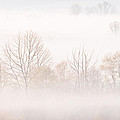 Cades Cove Fog - Square Version by Bill Swindaman