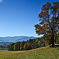 Cades Cove Landscape by Carolyn Marshall