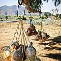 Calabash Gourd Bottles In Mexico by Elena Elisseeva
