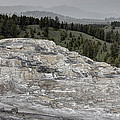 Calcite Bench - Mammoth Hot Springs by Daniel Hagerman