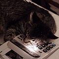 Calculator And Nightlite by John Bowers