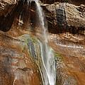 Calf Creek Falls by Melany Sarafis