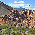 Calico Basin View by Frank Wilson