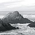 California Coast by Carol  Bradley
