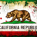 California Grunge Style Flag by David G Paul