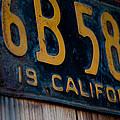 California Plate II by Heidi Reyher