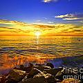 California Sunset by Daniel  Knighton
