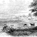 California: Vallejo, 1852 by Granger