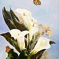 Callas And Butterflies by Mary Matherne